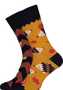 Many Mornings sokken Apple Hedgehog