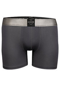 RJ Bodywear The Good Life, heren boxershort, grijs