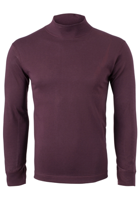 Alan Red T-shirt Illinois, turtleneck, aubergine