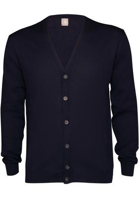 Jacques Britt heren vest wol Slim Fit, V-hals, marine blauw