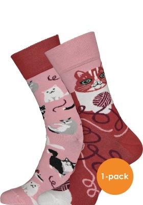 Many Mornings sokken Playful Cat
